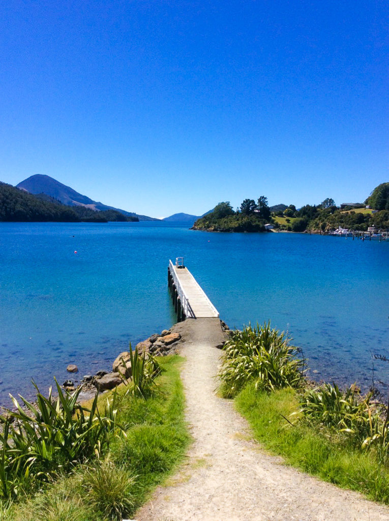 Elaine Bay camp spot new zealand with jetty