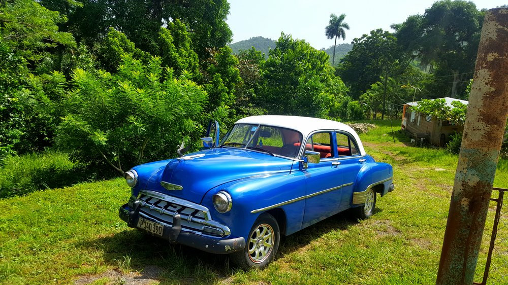 blue vintage car parked in the jungle in cuba