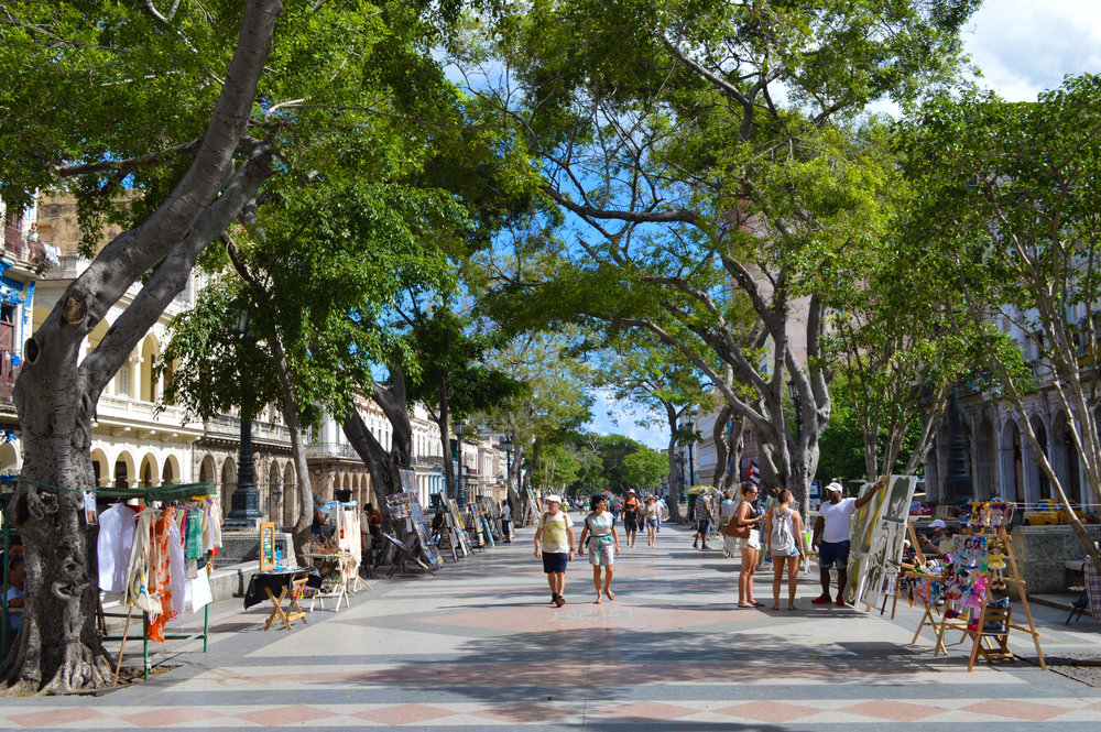 pedestrian strip with trees and souvenirs for sale