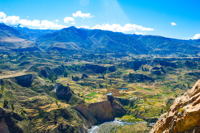 rice terraces carved into the mountains at colca canyon villages