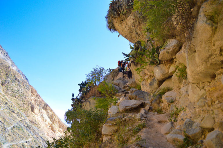 steep path up the mountain in colca canyon