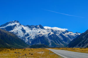 An Aotearoan Adventure: How To Spend a Two Month New Zealand Road Trip