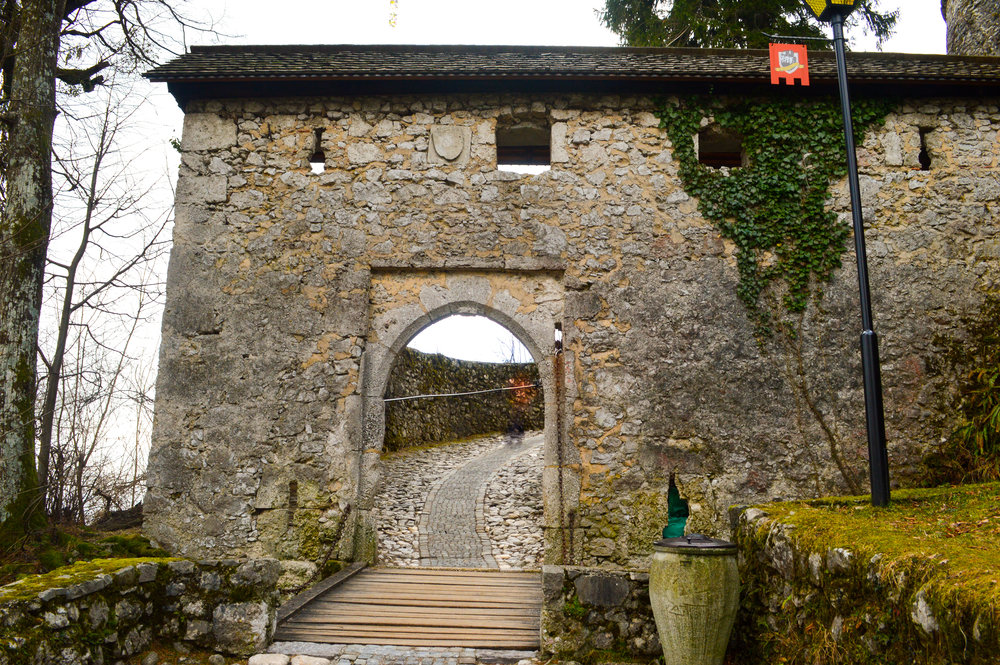 stone gate of castle with vines