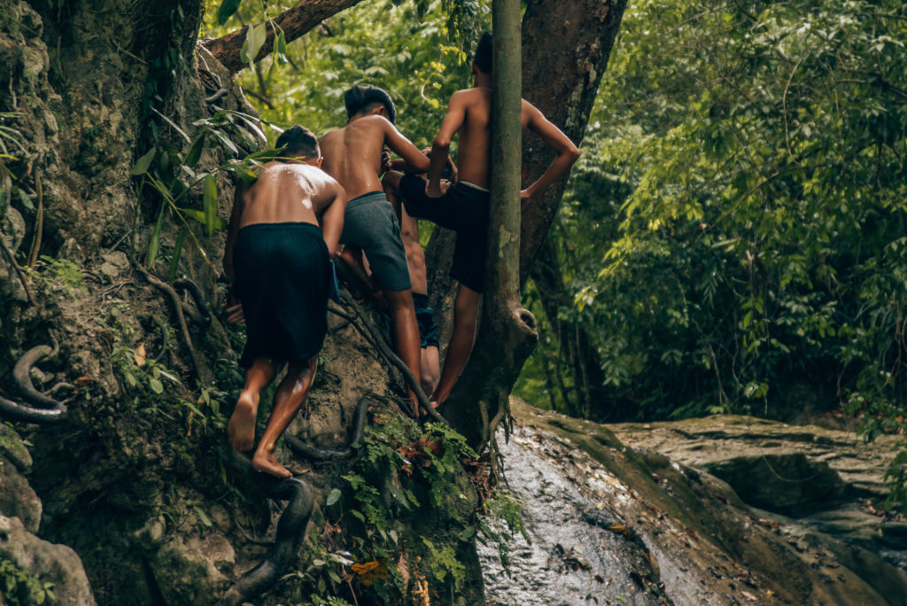 young boys climbing trees to jump into a waterfall pool