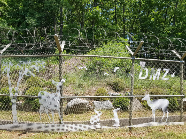 barbed wire at the DMZ border
