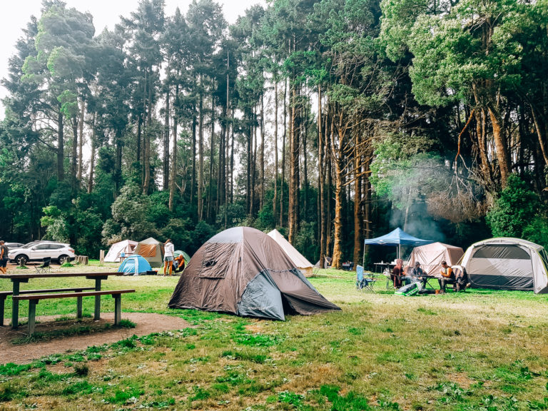 camping at beauchamp falls reserve