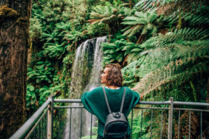 Three Incredible Waterfalls to Visit in the Otway National Park