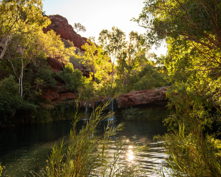 pool of water in creek with trees at Karijini National Park