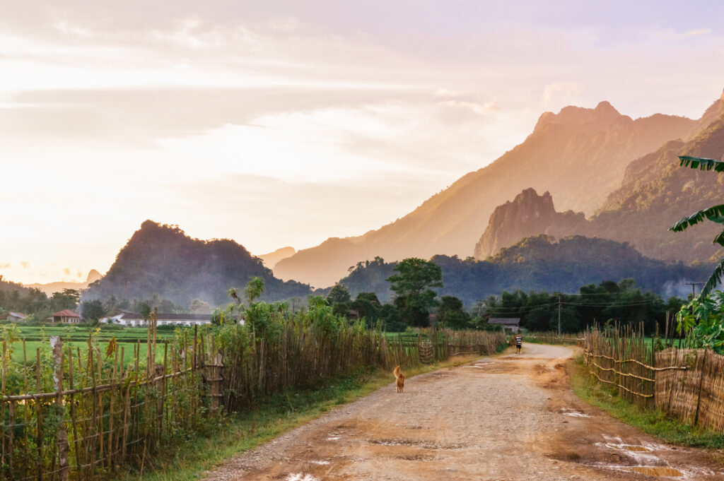 Laos countryside at sunset with a dog