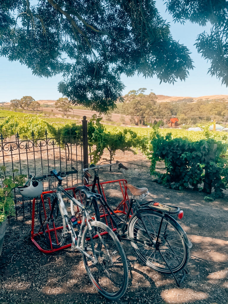 bikes at Crabtree Winery in front of vines