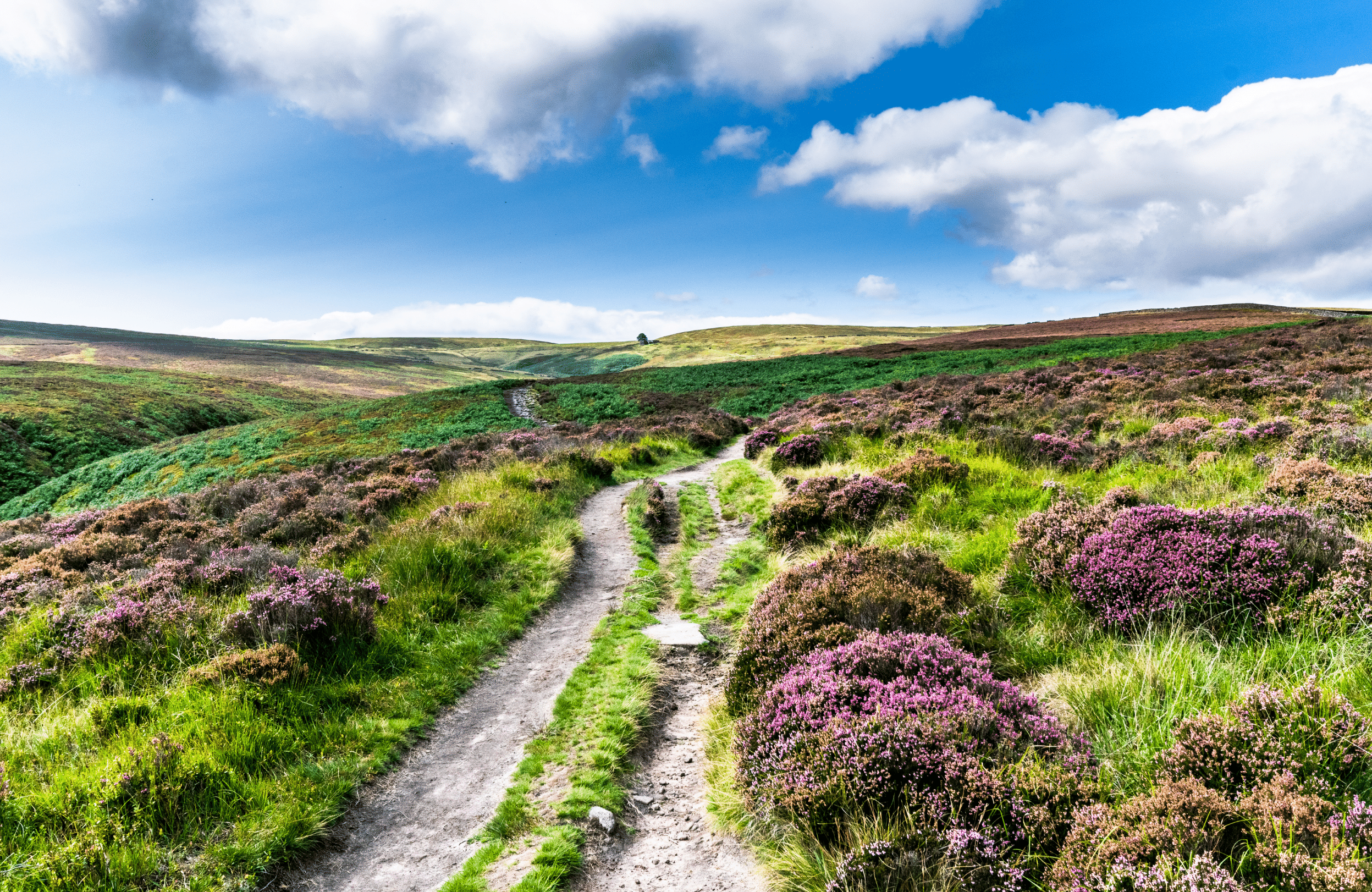 Uncover the Bronte Sisters' Yorkshire with a Day Trip to Haworth