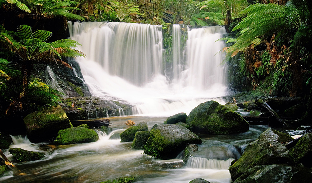 water cascading from waterfall in tasmania
